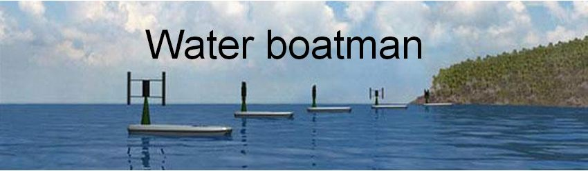 water-boatman-banner